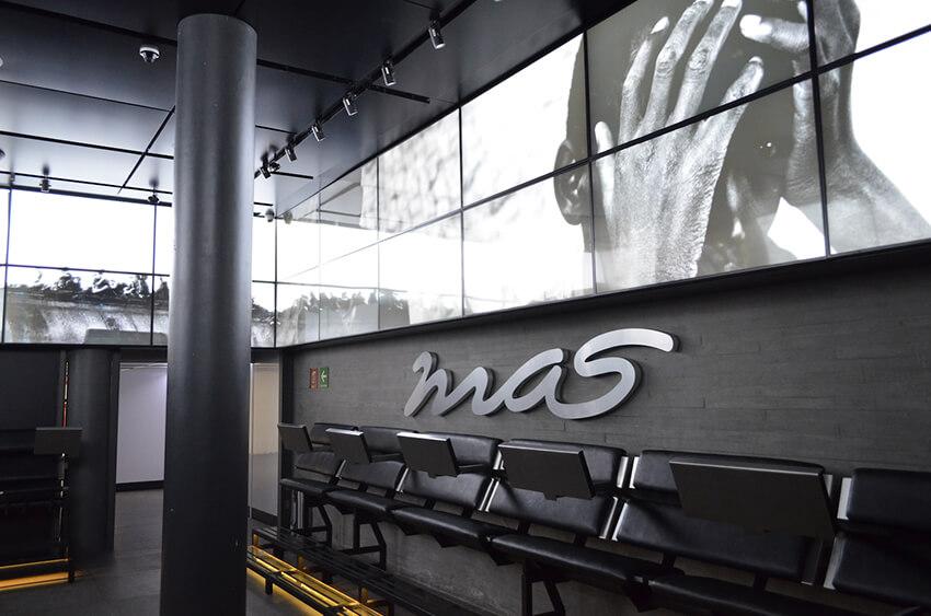 Movimiento de Acción Social (MAS)